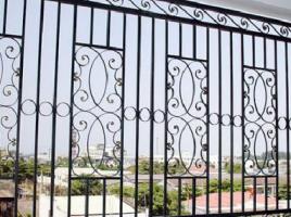 Hàng rào sắt 17
